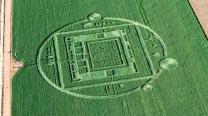 California Crop Circle
